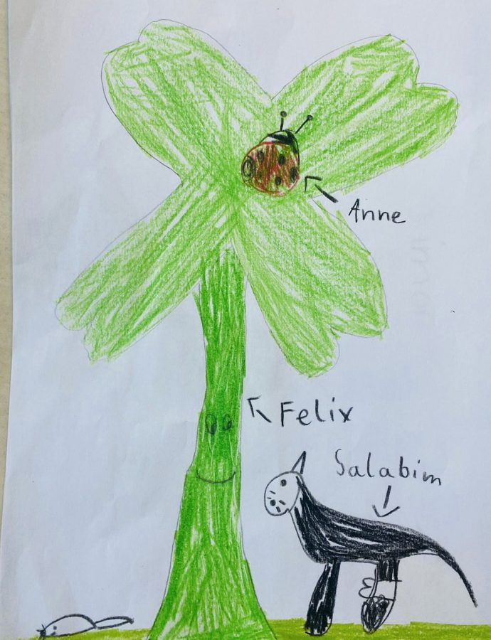 Kinder aus Hilden zeichneten Salabim